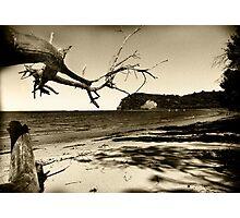 old flinders Photographic Print