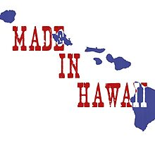 Made in Hawaii by surgedesigns