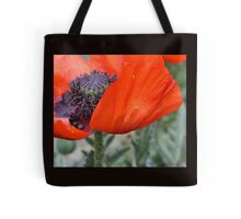 Poppy Petal Tote Bag
