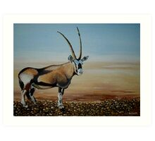 Gemsbok of the Kalahari Art Print
