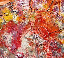Painted Desert Wood 1 by Skip Hunt