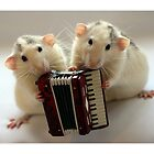 Little musicians by Ellen van Deelen
