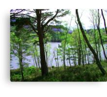 Loch an Eilean Canvas Print