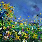 wild flowers 5641 by calimero
