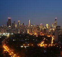 Chicago skyline at dusk by mvpaskvan