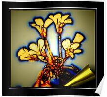 Golden Bouquet Poster