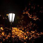 Autumn Night by kevomanno