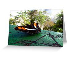 Iguazú butterfly Greeting Card