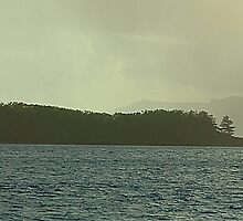 Warning - Whitsunday Islands, Queensland Australia by Philip Johnson