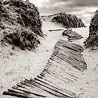 Broken path by Stephen Colquitt