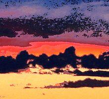 Sydney sky 07 by dajen edelkoort