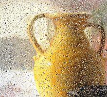 a sunny rainy day by dajen edelkoort