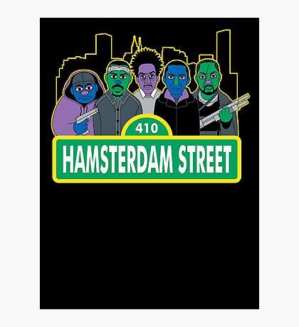 Hamsterdam Street Photographic Print