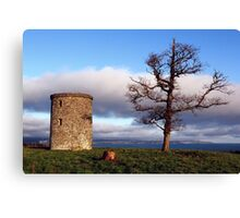 A Tree With A View Canvas Print