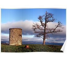 A Tree With A View Poster