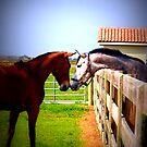 hello new friend? by AmeliaStrazz