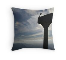 Delivery Throw Pillow