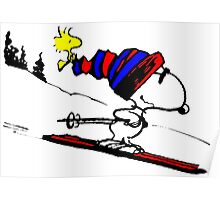 Snoopy and snow Poster