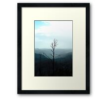 Silent and Alone - but we will survive Framed Print
