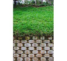 Green green grass tall tall wall Photographic Print