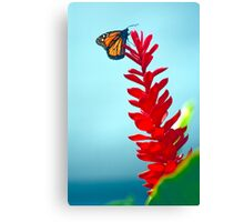 Monarch in High Places Canvas Print