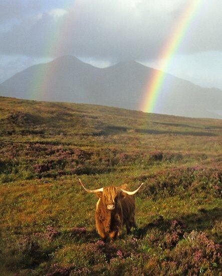 Isle of Skye by Kasia Nowak
