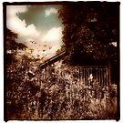 Backyard Sepia by Paul  Milburn