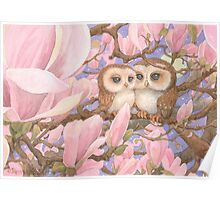 Love Owls Poster