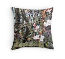 Old Viburnum Tree Throw Pillow