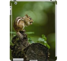Chipmunk in the forest - Jackpine Trail, Ottawa iPad Case/Skin