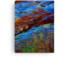Water The Otter Pool 2 Canvas Print