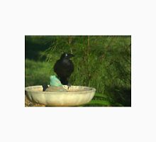 Crow on a bath Unisex T-Shirt