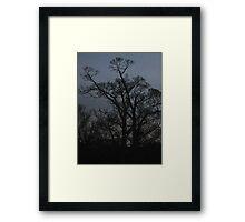 Like or Dislike? Framed Print