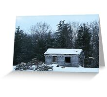 winter desolation Greeting Card
