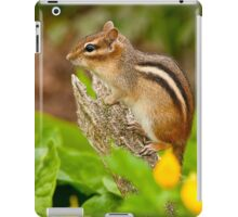 Chipmunk on Log iPad Case/Skin