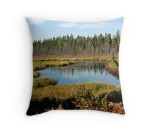 Beaver Dam Creek Throw Pillow