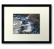 winter's last grip Framed Print