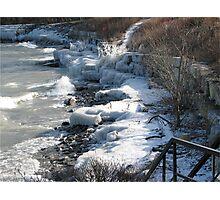 winter's last grip Photographic Print