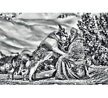 musher and dog Photographic Print