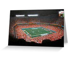 miami dolphins stadium Greeting Card