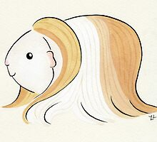 Long Haired Guinea-pig by zoel