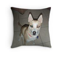 @LiEn Dog Throw Pillow