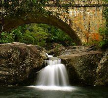 Crystal Creek Falls by Jeff  Peet
