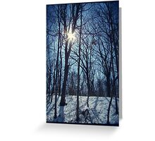 Shining White Greeting Card