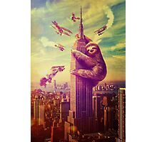 Sloth Kong Photographic Print