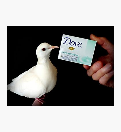 Dove Extra Sensitive... That's Me.. White Dove - NZ Photographic Print