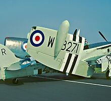 Fairey Firefly AS.5 WB271/R folded by Colin Smedley