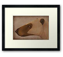 Hyaenodon sp. Framed Print
