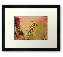 Numbers, letters and flower Framed Print