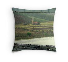 Framed by the Railroad Co. Throw Pillow